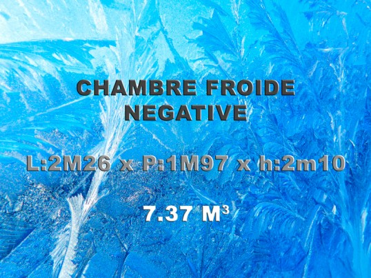Chambre froide n gative 2 26 x 1 97 x h 2 10m 7 37m3 - Chambre froide negative occasion ...